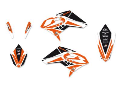 BLACKBIRD Dekorsatz Graphicskit DREAM 4 BETA RR 250 300 350 400 10-12